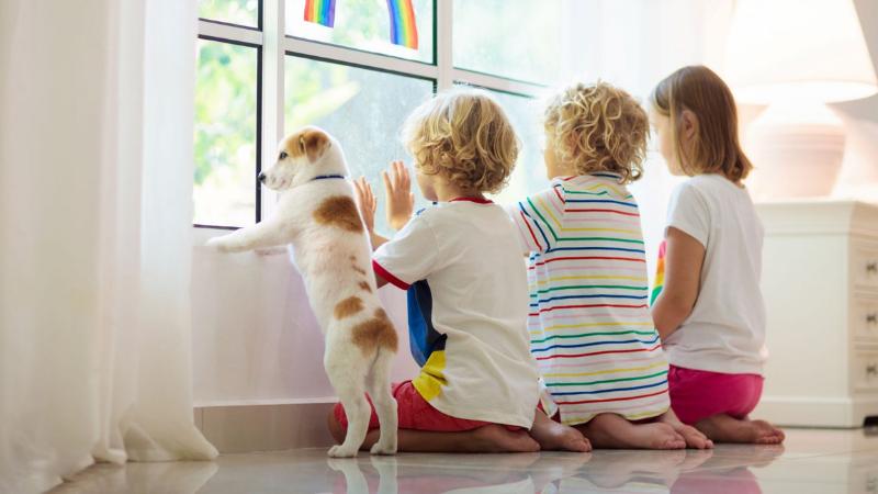 Kolme lasta ja pieni koira katsovat ulos ikkunasta. Ikkunaan on maalattu sateenkaari.