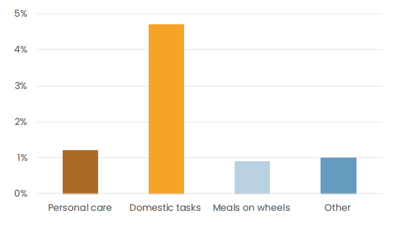 Figure showing that the care services most commonly used among older Finns are those helping with domestic tasks.